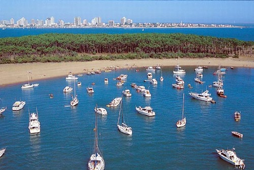 Punta del Este - Image of Introduction number 13