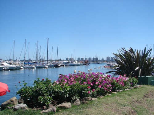 Punta del Este - Image of Introduction number 7